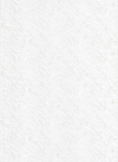 170-Λευκό ιριδίζον με εντυπωσιακή τεχνοτροπία